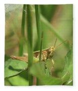 A Shy Grasshopper Fleece Blanket