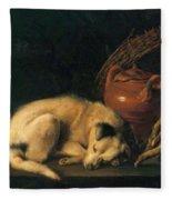 A Sleeping Dog With Terracotta Pot 1650 Fleece Blanket