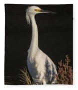 A Snowy Egret Portrait Fleece Blanket