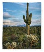 A Spring Evening In The Sonoran  Fleece Blanket