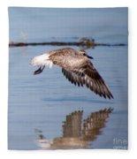 A Startled Sanderling By Darrell Hutto Fleece Blanket