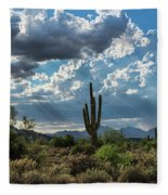 A Summer Day In The Sonoran  Fleece Blanket
