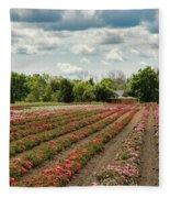 A Summer Dream Of Roses Fleece Blanket