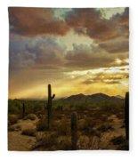 A Summer Evening In The Sonoran  Fleece Blanket