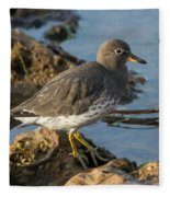 A Surfbird At The Tidepools Fleece Blanket