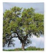 A Tale Of One Tree Fleece Blanket