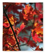 A Time For Every Season IIi In Watercolor Fleece Blanket