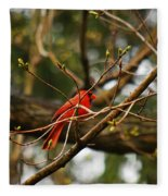 A Touch Of Red Fleece Blanket