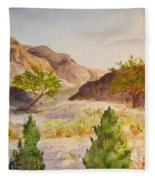 A View At Red Rock Fleece Blanket
