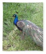 a Visit by Blue Fleece Blanket