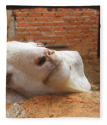 A Visit With A Smiling Goat Fleece Blanket