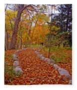 A Walk Along Natures Path Fleece Blanket