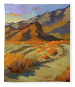 A Walk In La Quinta Cove Fleece Blanket