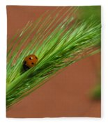 A Walk In The Tall Grass Fleece Blanket