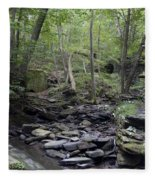 A Walk In The Woods Fleece Blanket