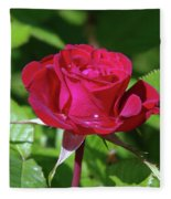 A Watered Rose  Fleece Blanket