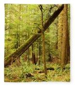A Whisper In The Rainforest Fleece Blanket
