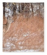 A White-tailed Deer In A Snow Storm Fleece Blanket