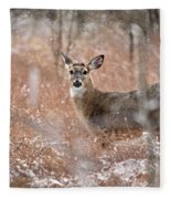 A White-tailed Deer In The Snow Fleece Blanket