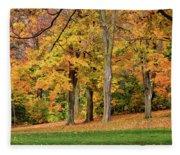A Wonderful Walk In The Park Fleece Blanket