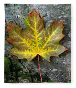 A Work Of Nature's Art Fleece Blanket