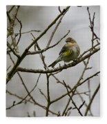 A Yellow-rumped Warbler In The Evening Fleece Blanket