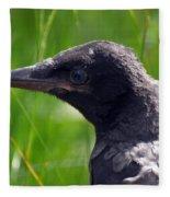 A Young Crow Fleece Blanket