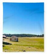 Abandoned In Meadow Fleece Blanket