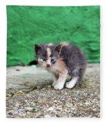 Abandoned Kitten On The Street Fleece Blanket