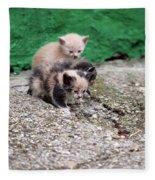 Abandoned Kittens On The Street Fleece Blanket