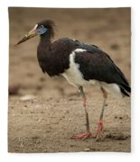 Abdim Stork Walks Right-to-left Across Muddy Ground Fleece Blanket