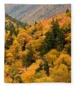 Ablaze With Autumn Glory Fleece Blanket