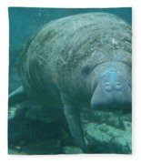 About To Meet A Manatee Fleece Blanket