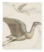 Above A Flying Crane And Beneath A Flying Pelican, Anonymous, 1688 - 1698 Fleece Blanket