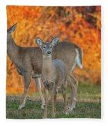 Acadia Deer Fleece Blanket