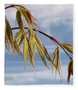 Acer Fleece Blanket
