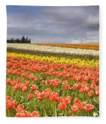 Across Colorful Fields Fleece Blanket