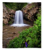 Adams Canyon Lower Falls Spring Fleece Blanket
