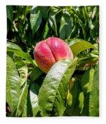 Adams County Peach Fleece Blanket