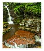 Adams Falls Landscape Fleece Blanket