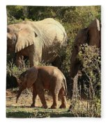 Addo Elephant Family Fleece Blanket