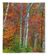 Adirondack Birches In Autumn Fleece Blanket