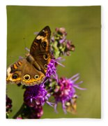 Admiral Butterfly  Fleece Blanket