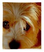 Adorable Daisy Fleece Blanket
