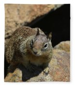 Adorable Up Close Look Into The Face Of A Squirrel Fleece Blanket