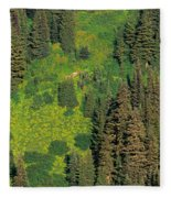 Aerial View Of Forest On Mountainside Fleece Blanket