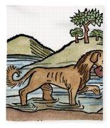 Aesop: Dog & Shadow, 1484 Fleece Blanket