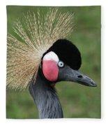 African Crowned Crane #7 Fleece Blanket