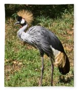 African Crowned Crane Poising Fleece Blanket