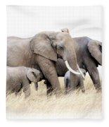 African Elephant Group Isolated Fleece Blanket